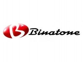 Запчастини для технiки Binatone фото
