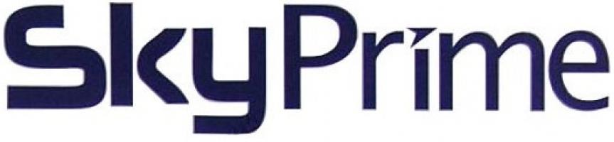 Запчастини для технiки Skyprime фото